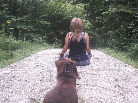 |5| the Yogic Path | riflessione meditativa