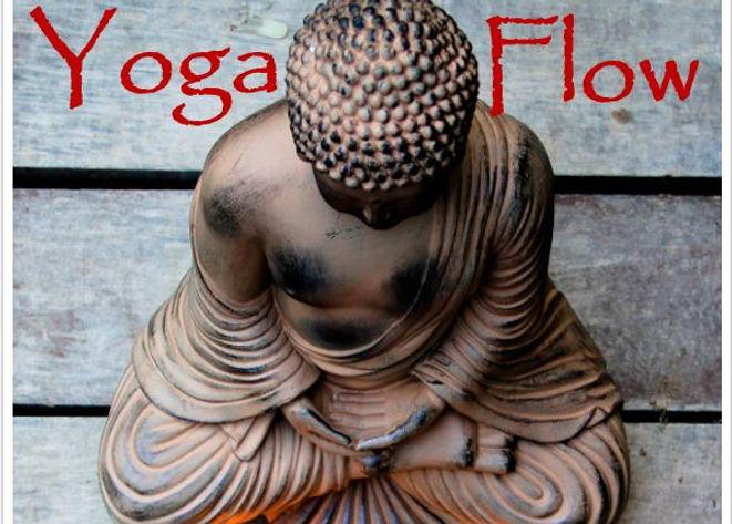 libro yoga.JPG