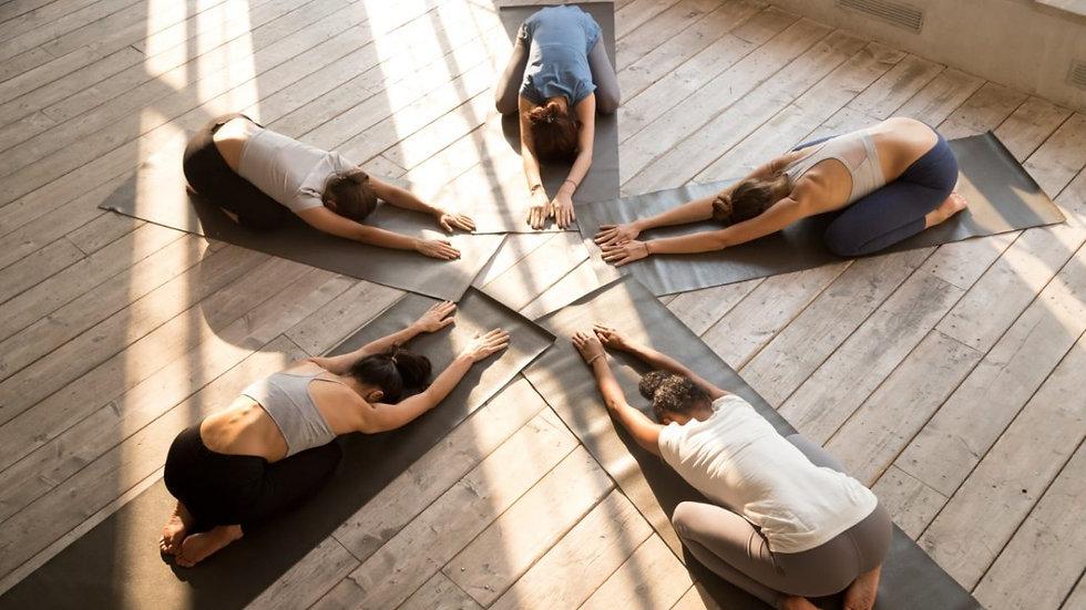 yoga-ASANA-stella.jpg
