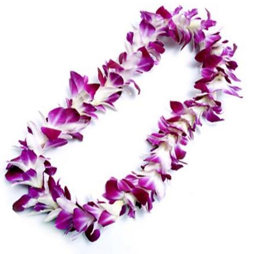 Purple Dendrobium Orchid Graduation Lei