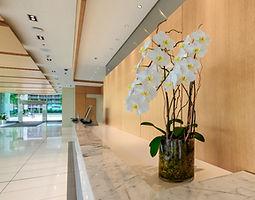 lobby orchids.jpg