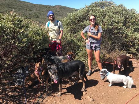 COMMUNITY PACK HIKE! Cerro San Luis Obispo Trail on 11/2/2019 @ 10am.