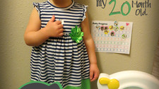 How I Potty Trained my 20 Month Old in 2 Days!