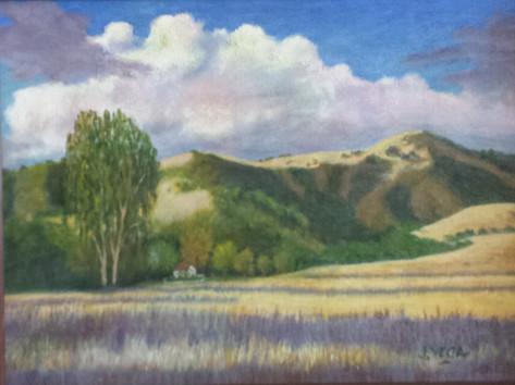 Danville Hills