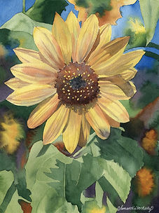 Delta Sunflower II.jpg