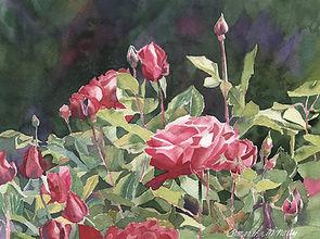 Two Dozen Roses.jpg