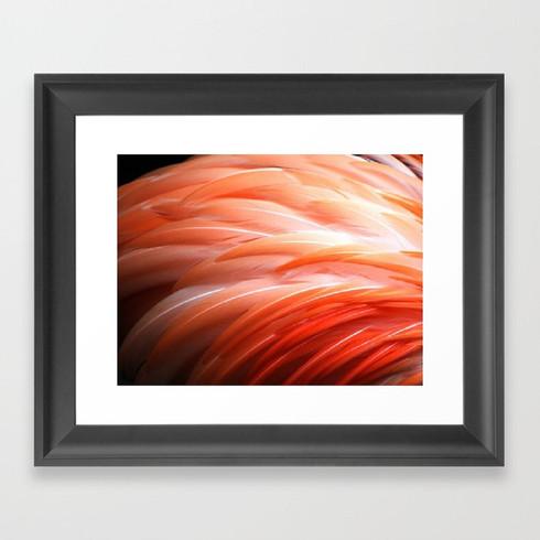 Flamin Flamingo