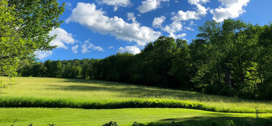 Vermont Field at Leading Field Retreat Space