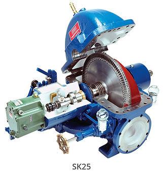SK25 1.jpg