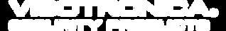 Logo Visotronica