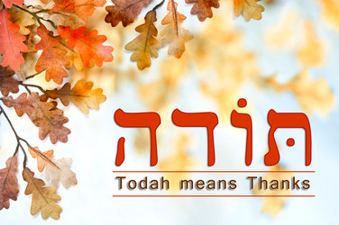 Let's Give TODAH