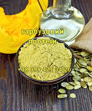 49768292-flour-pumpkin-in-bowl-pumpkin-s