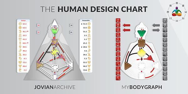Schéma_corporel_Design_Humain.png