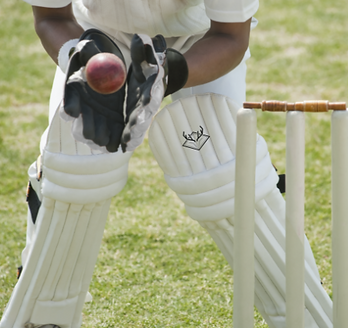 cricketer-taking-catch-behind-stumps.png