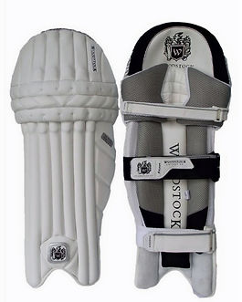 Cricket Pads and Protection