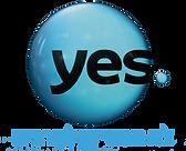ייעוץ ניהול ידע YES חברות תקשורת