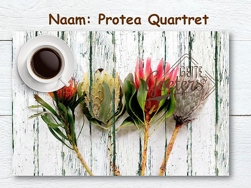 Protea Set of 6 Placemats - different options