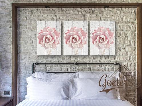 WHOLESALE SET of 3 Set of 3 Succulent Flower Pink