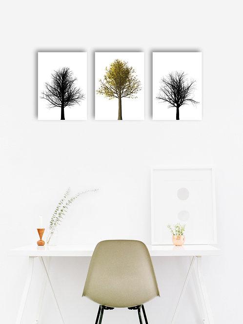 Set of 3 Trees - Black