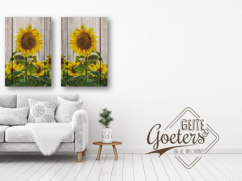 A0 Split Sunflower (set)
