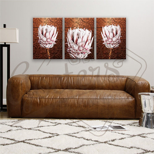 BRONZ Protea Light Pink