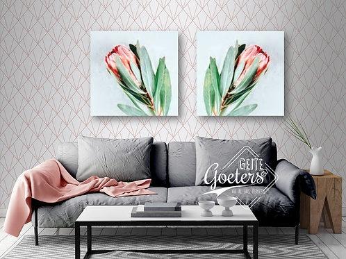 Set of 2 Pastel Protea Single