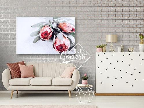 Pastel Protea Trio Dark Pink