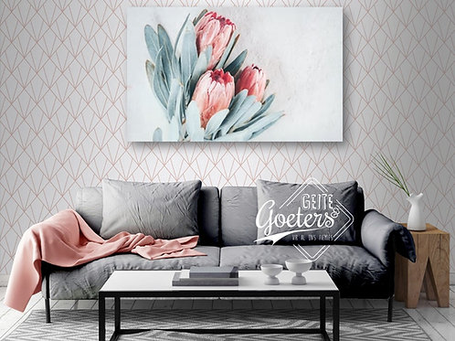 Pastel Protea Trio Light Pink