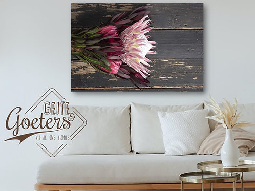 2021 Wood Protea  Rusted Pink