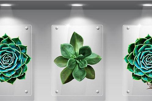 Perspex Succulent green Set of 3
