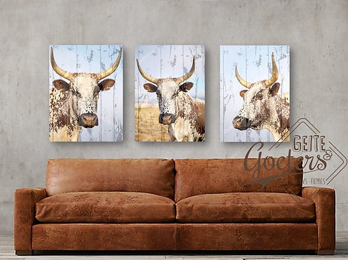 A3 Nguni Trio: Brown