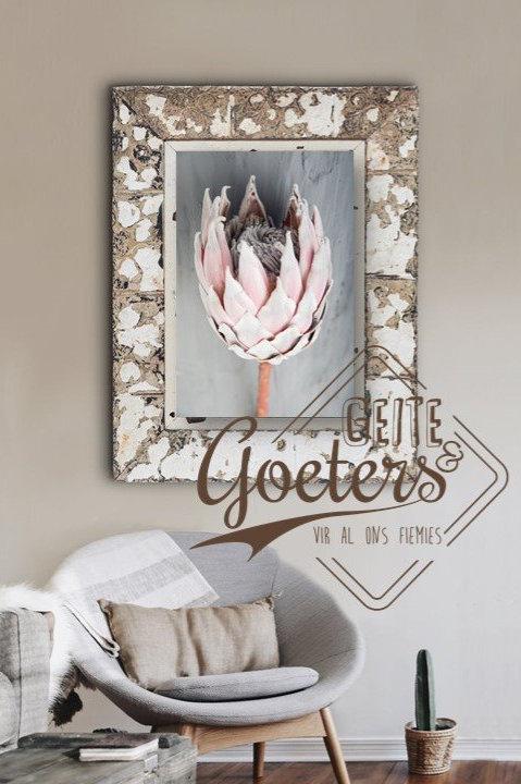 FRAMED: Protea Grey Series Single