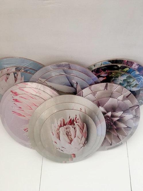 Coasters: Succulent