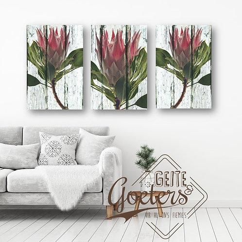 SPECIAL A3: Protea Trio Light Pink
