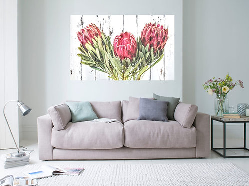 Protea Dark Pink with White