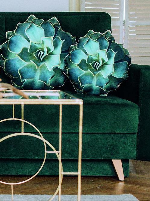 Succulent Cushion shaped