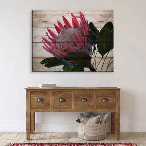 2020 Rustic Protea Side Bright pink