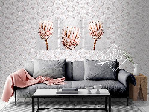 Perspex Protea Light Pink Set of 3