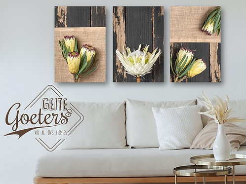 2021  Set of 3 Rustic White Sides