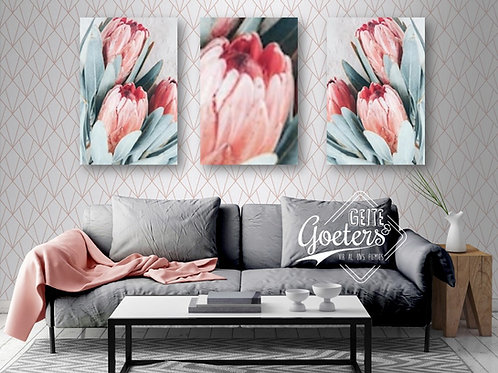 Pastel Protea Light Blue and Pink set of 3