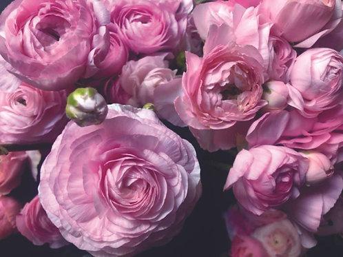 Laptop Skins: Pink Floral