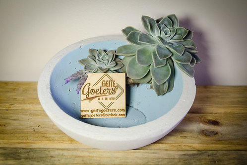 Medium Cement Decorative/Food Bowls