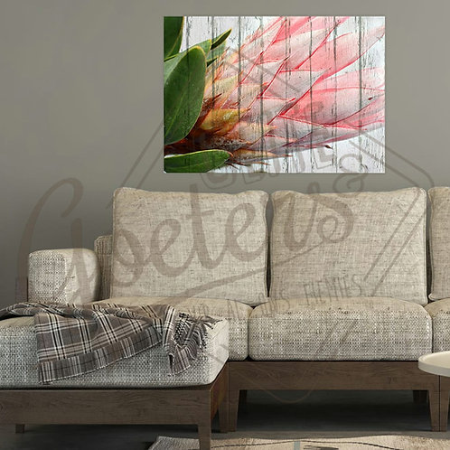 Buy one get one free: Protea single side - light pink