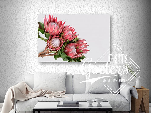 Protea bunch side - dark pink