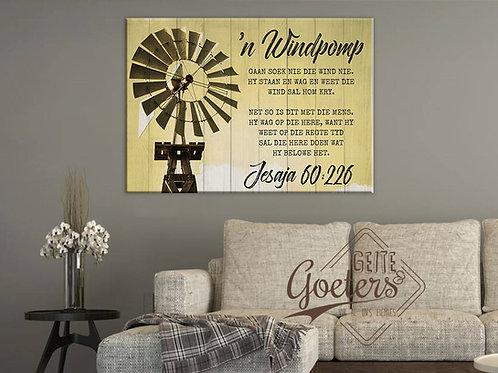Windmill 'n windpomp