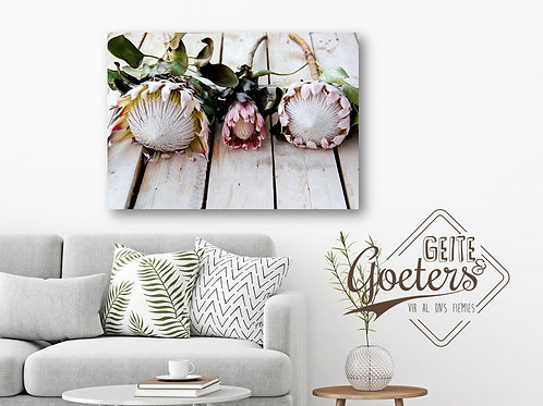 Buy one get one free: Rustic Facing Protea