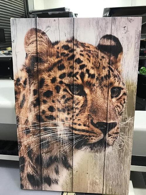 Cheetah on wood