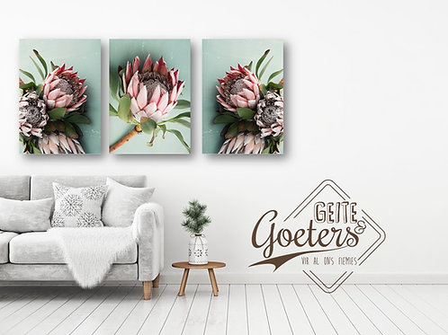 Set of 3 Protea Green Trio and leaves