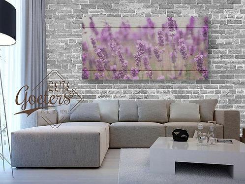 WHOLESALE Lavender Grey