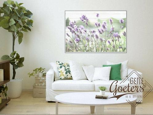 Lavender White
